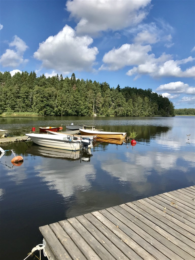 Båtplats via samfälligheten i sjön Närdingen samt badbrygga med stege