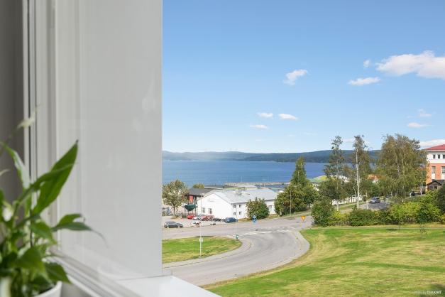 Utsikt från köksfönstret