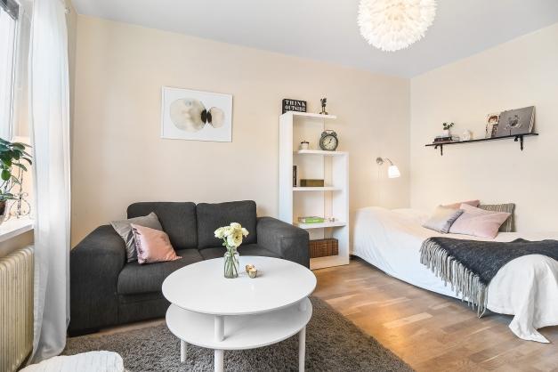 Rum med plats för soffa, säng och matbord