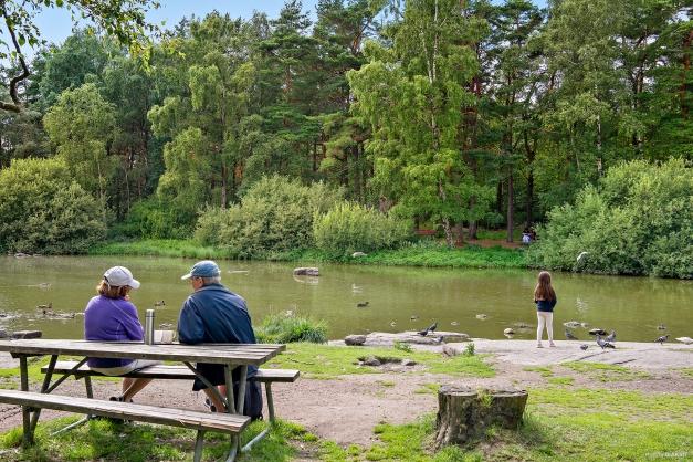 Känner du för en promenad finns det flera trevliga motionsspår i området. Torpadammen är en av de.