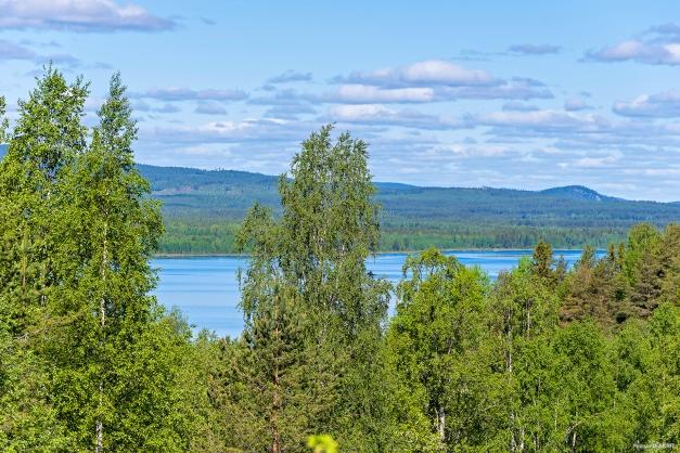 Utsikt ner mot Örträsk sjön!