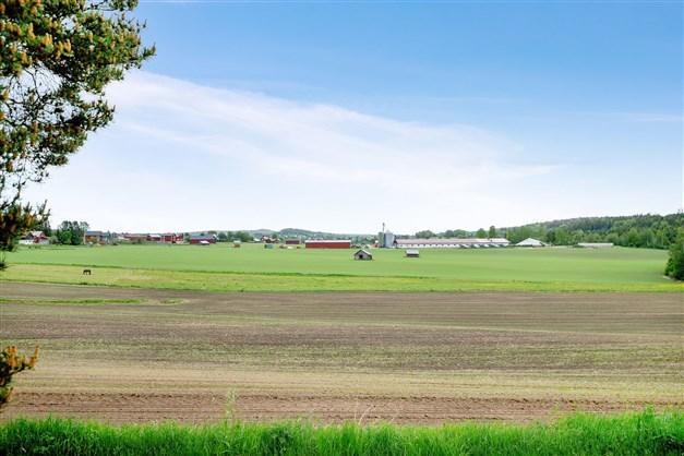 Utsikt över åkermarkerna