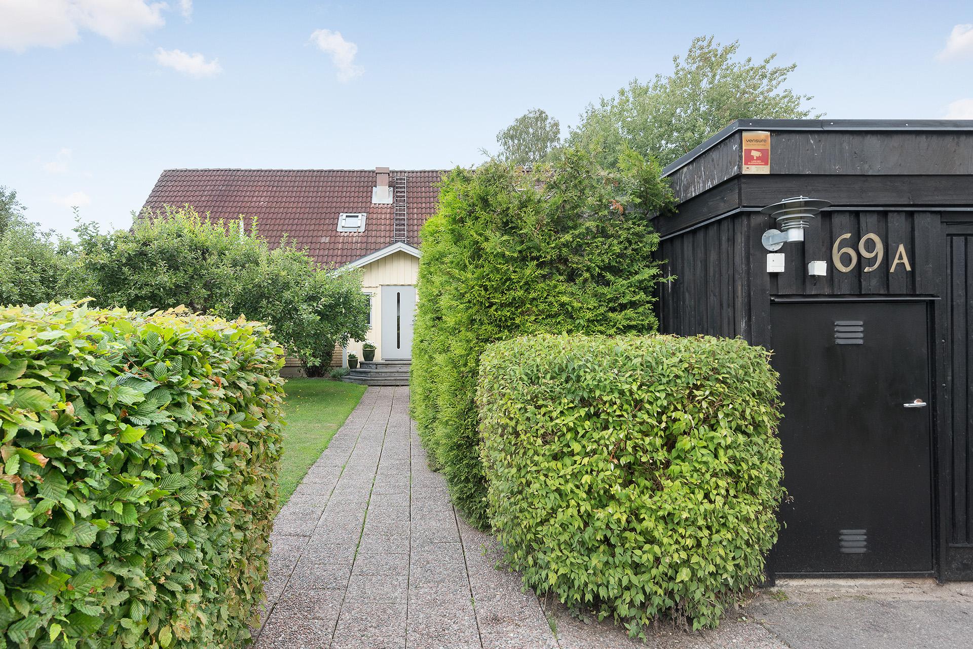 Uppväxt trädgård och garage