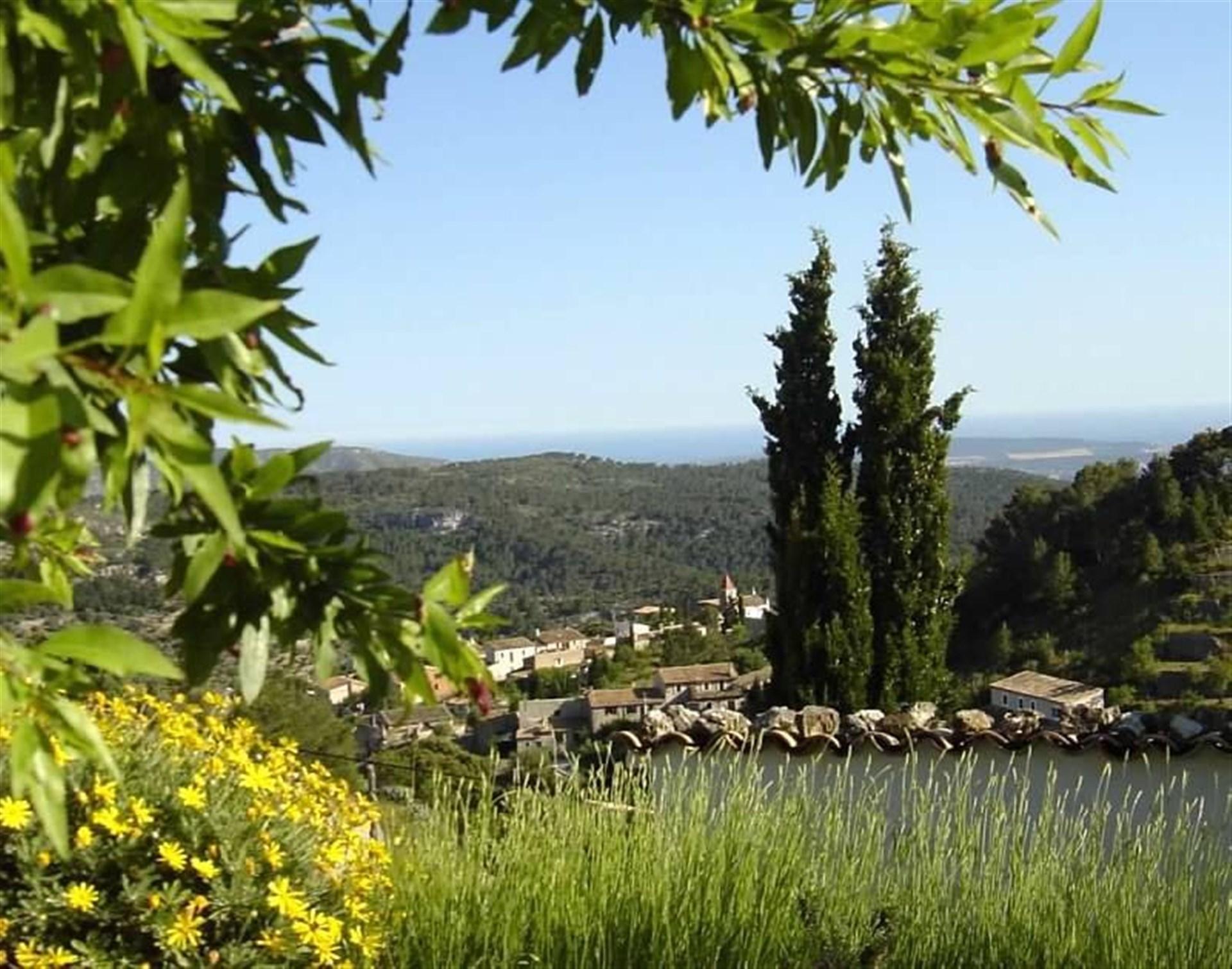 Trädgård, utsikt