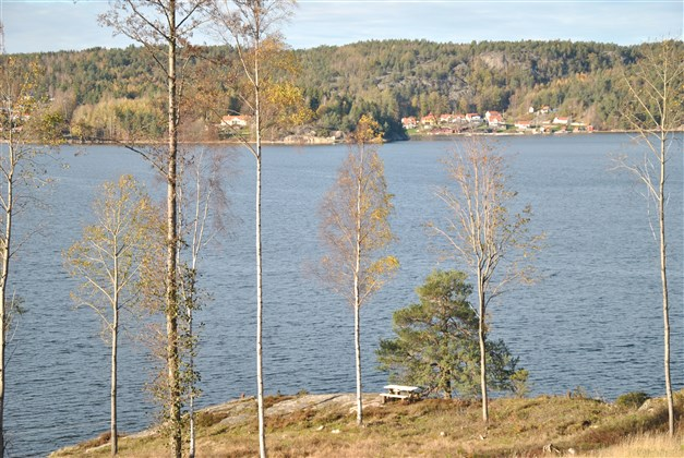 Fin plats vid Byfjorden (vårbild)