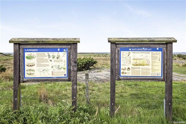 Naturreservat på kort promenadavstånd från huset