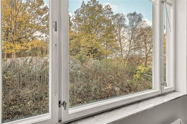 Alla fönster har detta insynsskyddade läge
