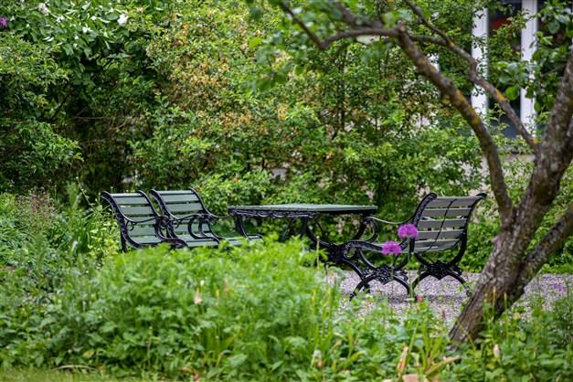 Föreningen grönskande innergård