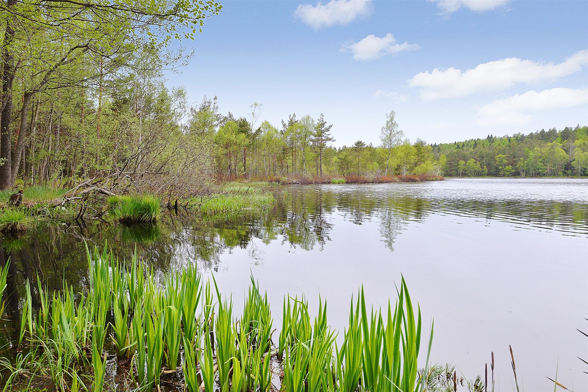Strålsjön