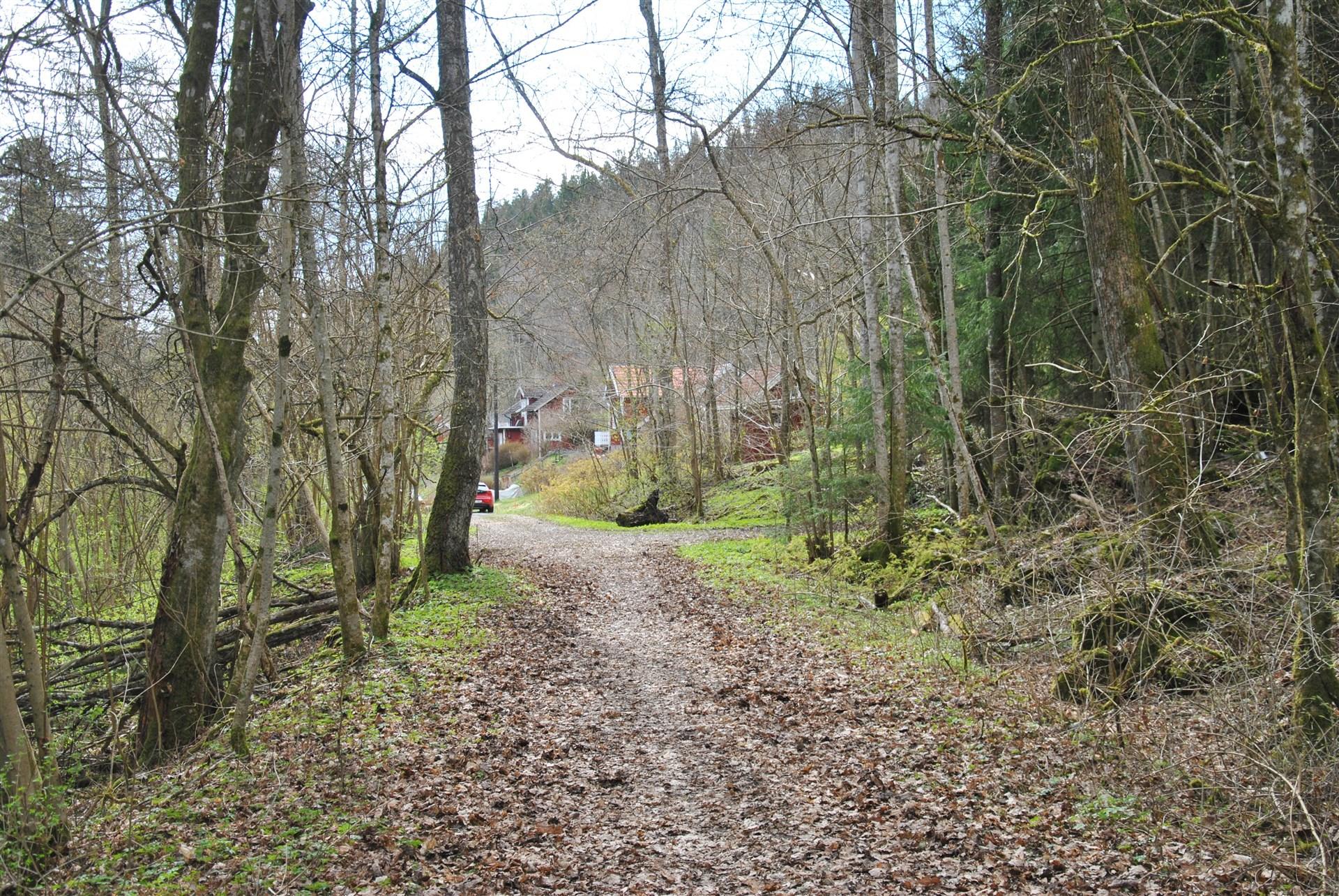 Vägen mot huset (1:a till höger)