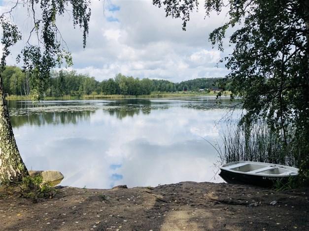 Vedasjön en härlig promenad bort