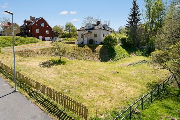 Trädgård med rena grönytor och inslag av prydnadsträd och trädgårdsväxter