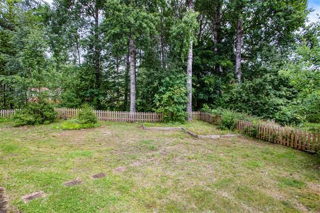 Trädgården gränsar mot grönområde.