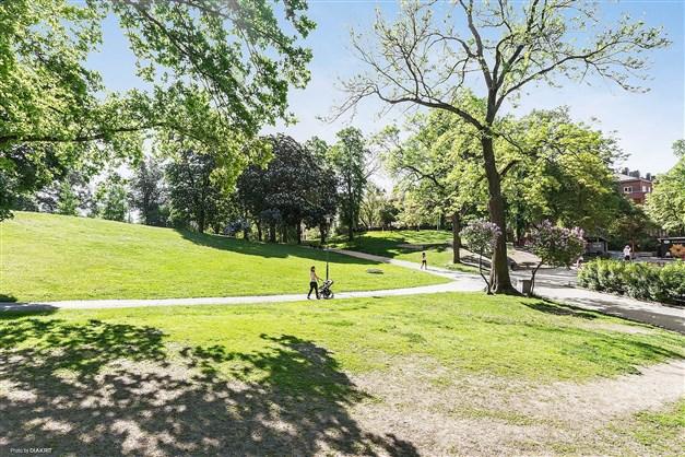 Kronobergsparken