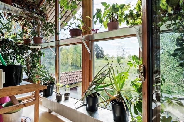 Den inglasade balkongen i anslutning till föräldrasovrummet som är inredd till växthus och genom ventilationstillförsel renar husets inomhusluft