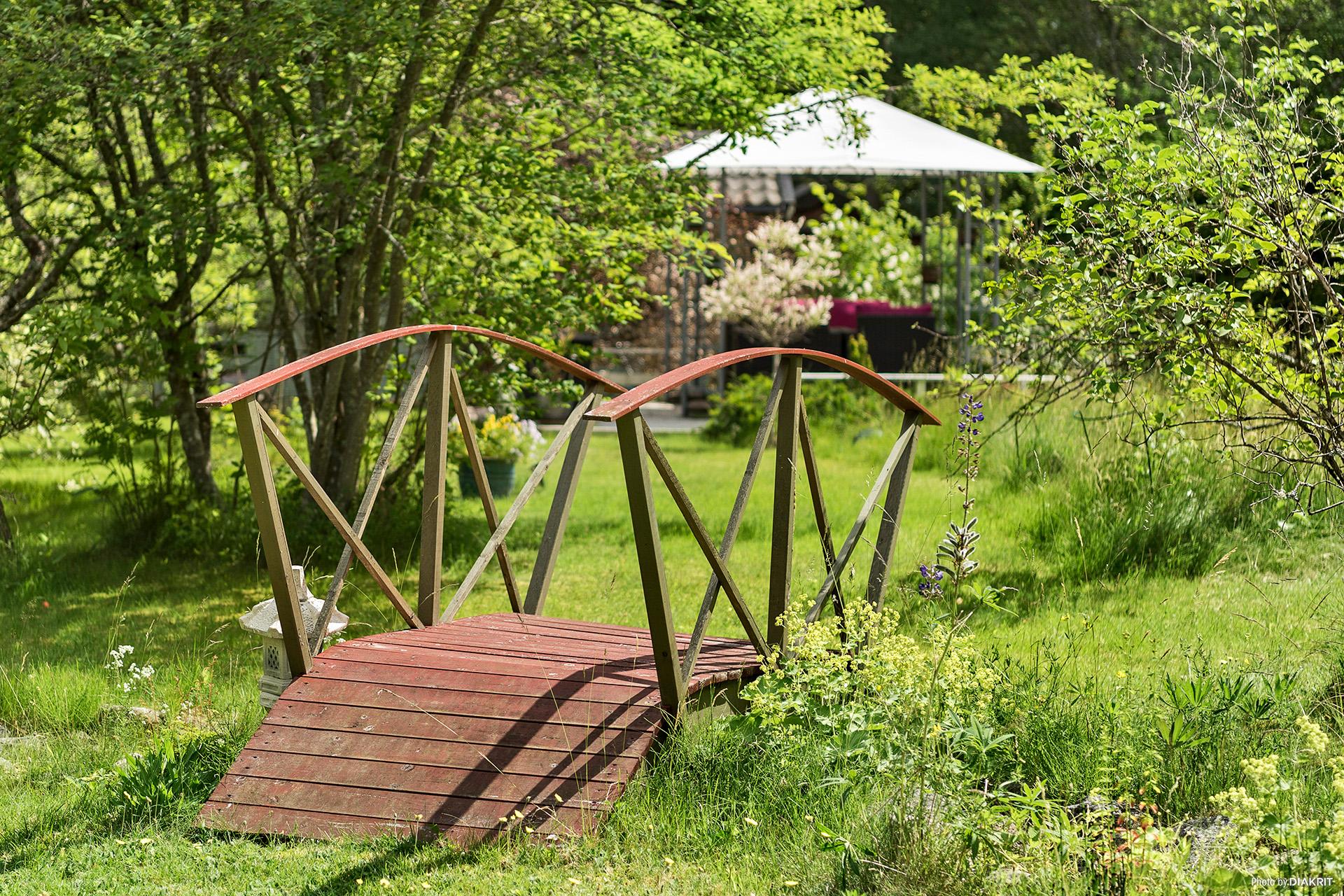Trevlig gångbro i trädgården
