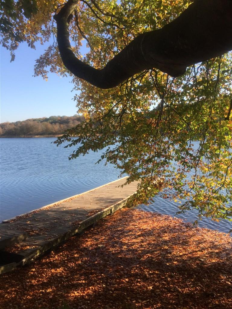 Gyllebosjön