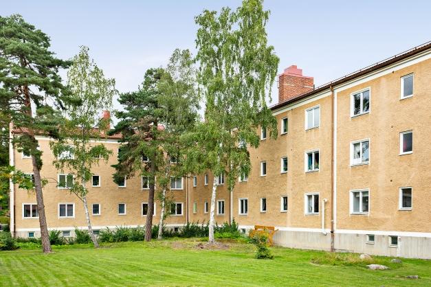 Föreningens gård på baksidan