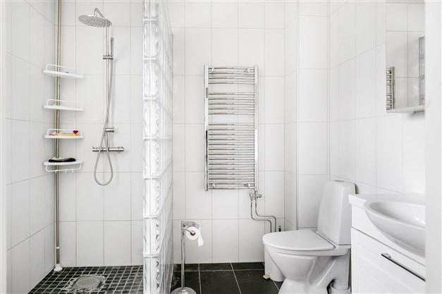 Här finns både dusch, toalett och handfat.
