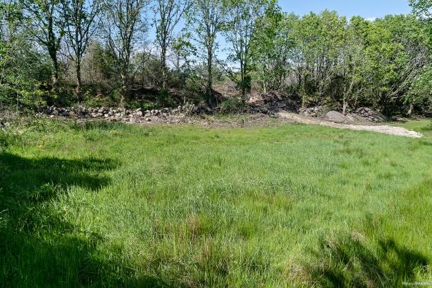En plan och ljus tomt som omgärdas av både grönska och gärdsgård