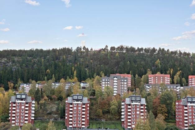 Utsikt från köksfönstret.