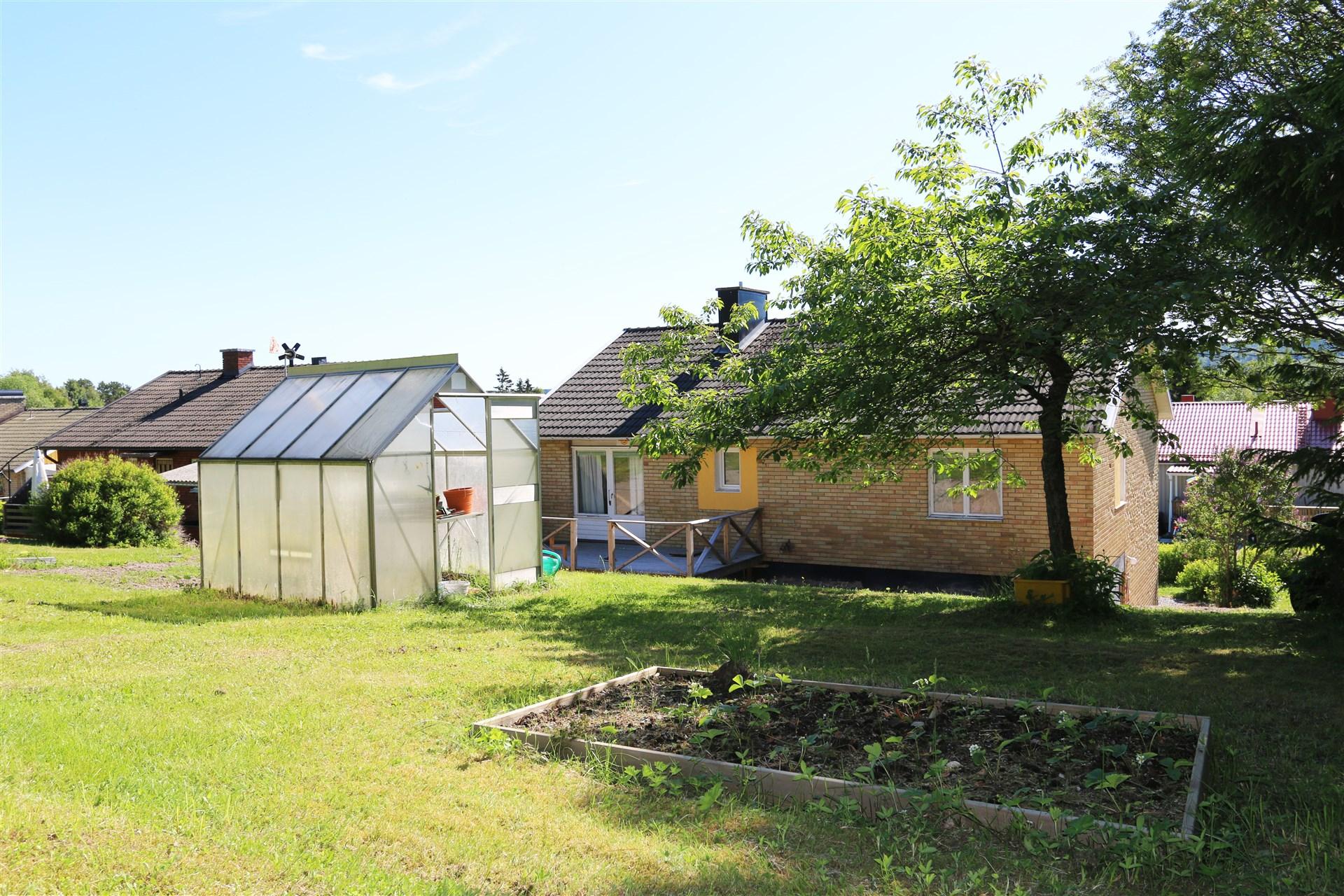 I trädgården finns både växthus och jordgubbsland