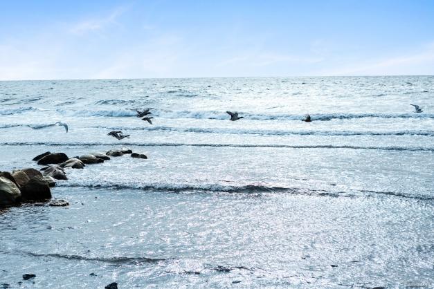 Gångavstånd till havet
