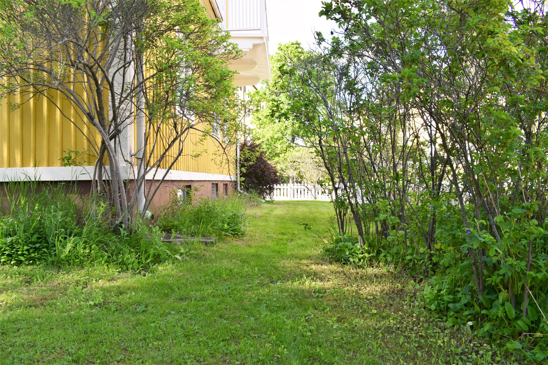 Lummig trädgårdstomt