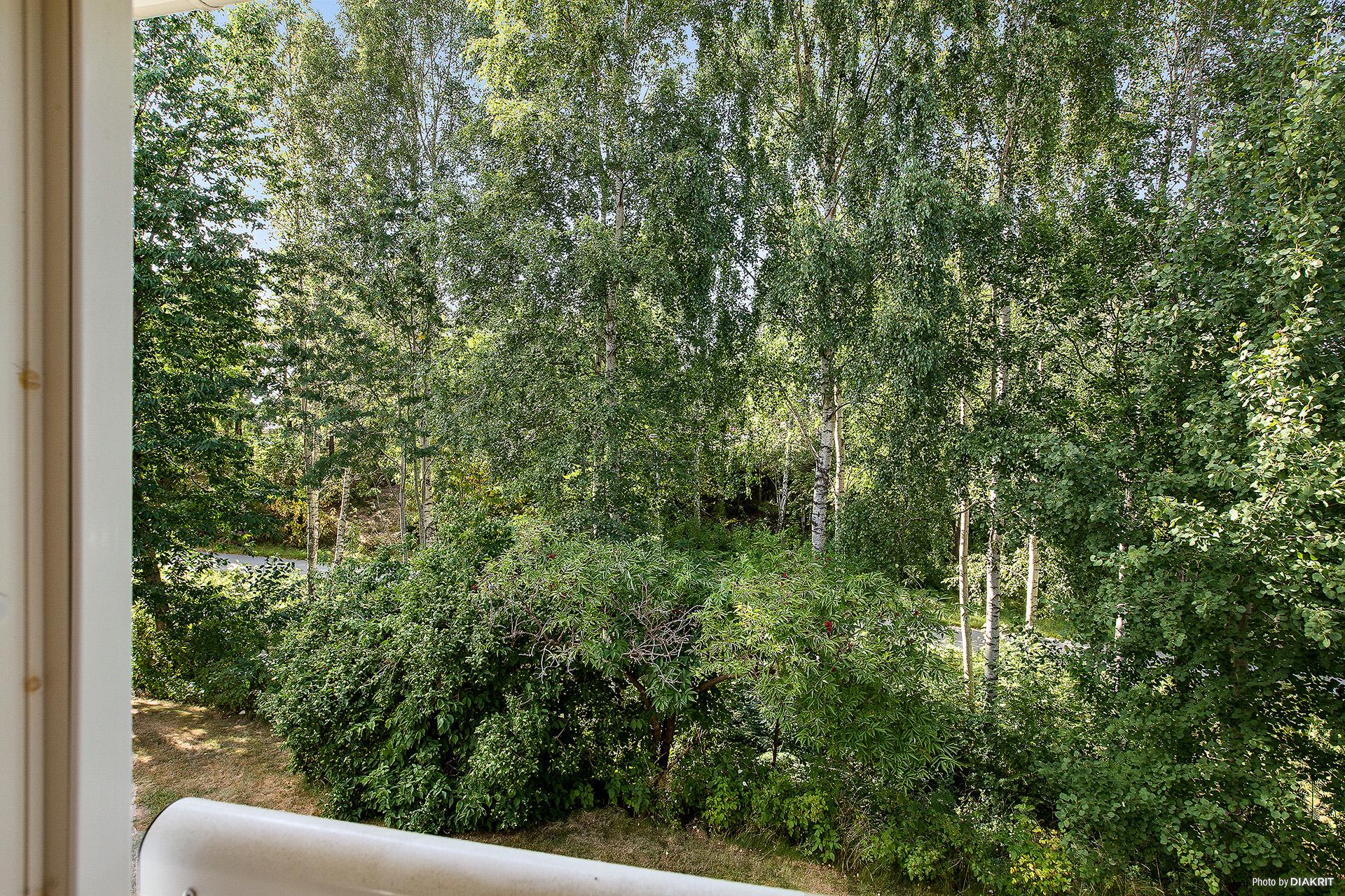 Härlig utsikt från den franska balkongen.