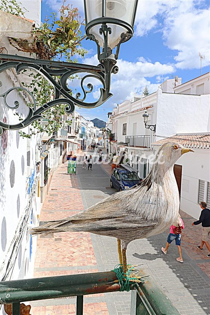 Utsikt över mysiga Calle Carabeo från balkongen