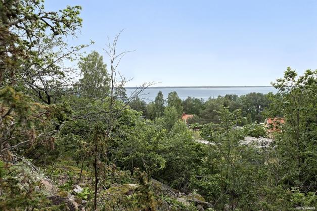 Utsikt från berget