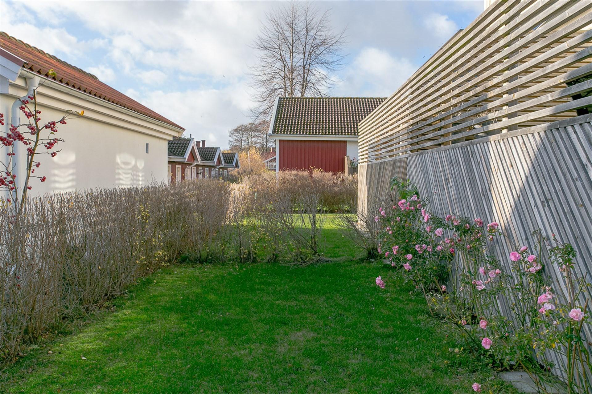 Mindre gräsplan framför uteplatsen