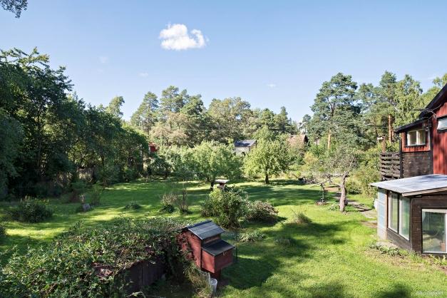 Trädgården med gräsmatta, fruktträd och bärbuskar