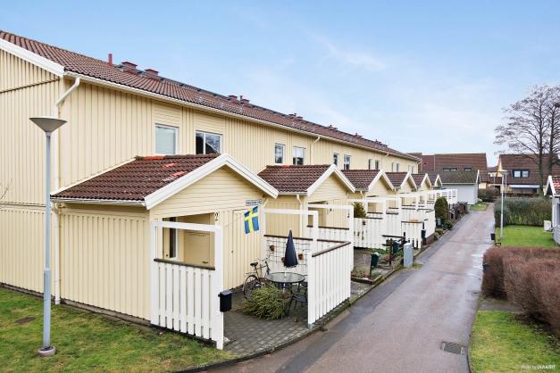 Välkomna till Hålefinas väg 4!