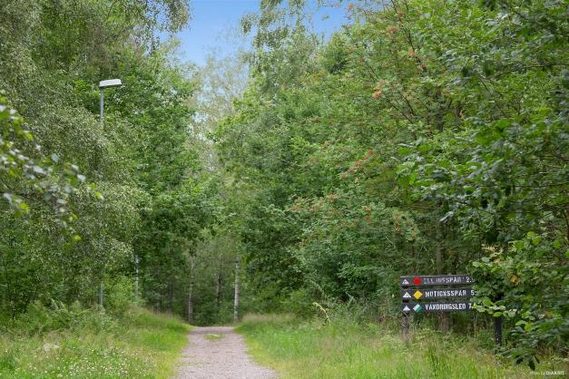 Motionsspår i Kåsjöområdet