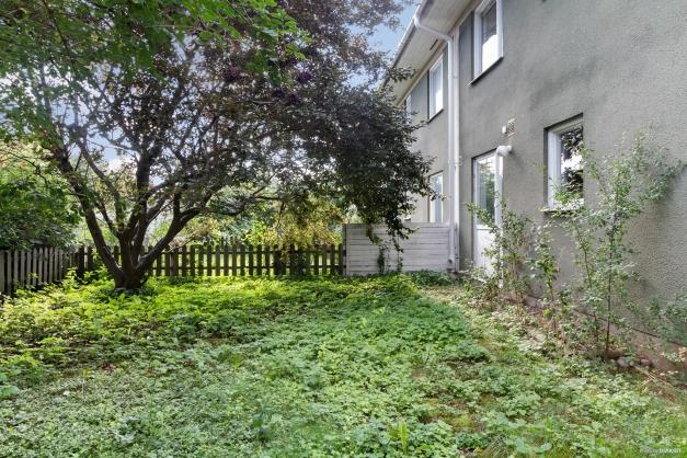 Trädgård på baksidan av huset.