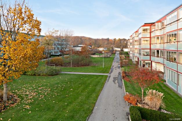 Området är mycket välskött och med många grönytor, lekplats, grillplatser mm.