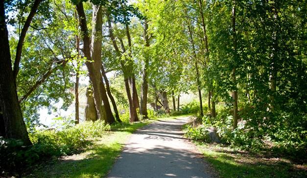 Naturområde Bromma