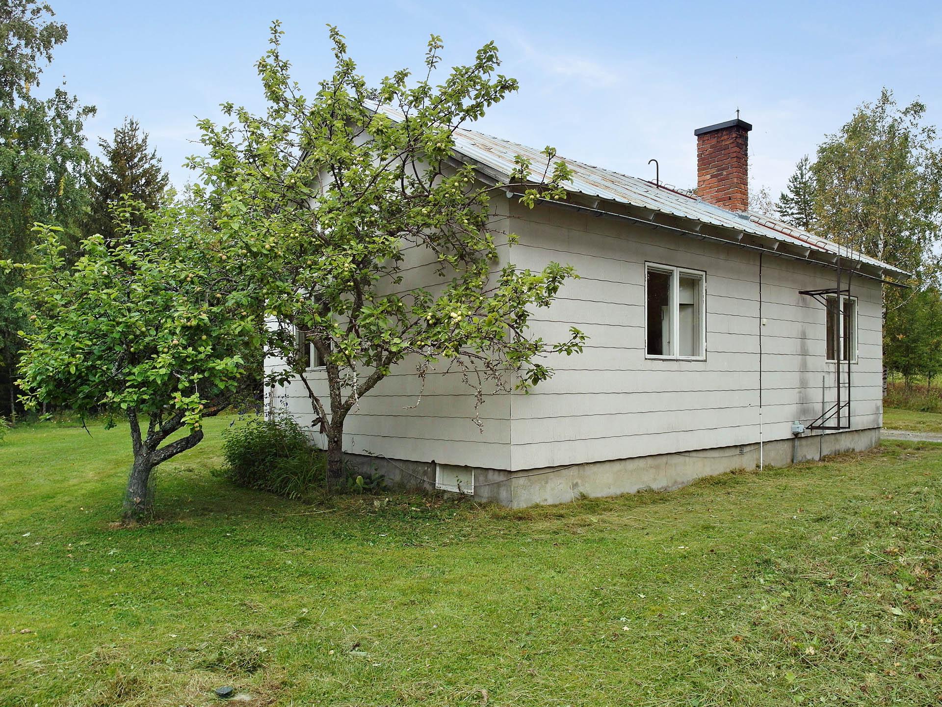 Baksidan av huset. på gaveln finns två stycken äppelträd!