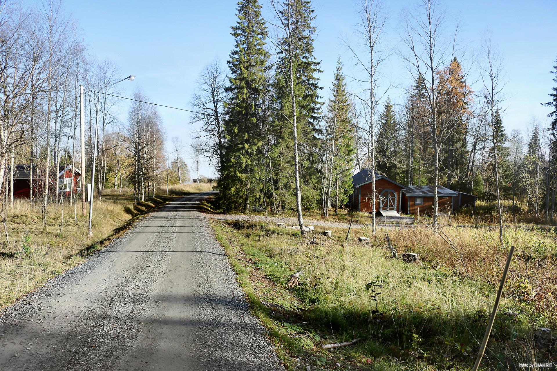 Vägen som leder ner till Kallsjön