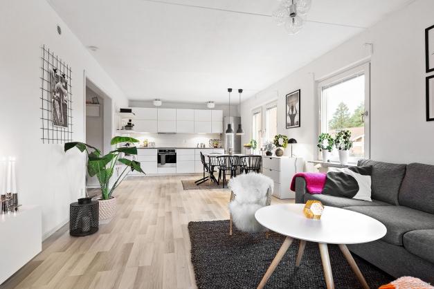 Kök och vardagsrum