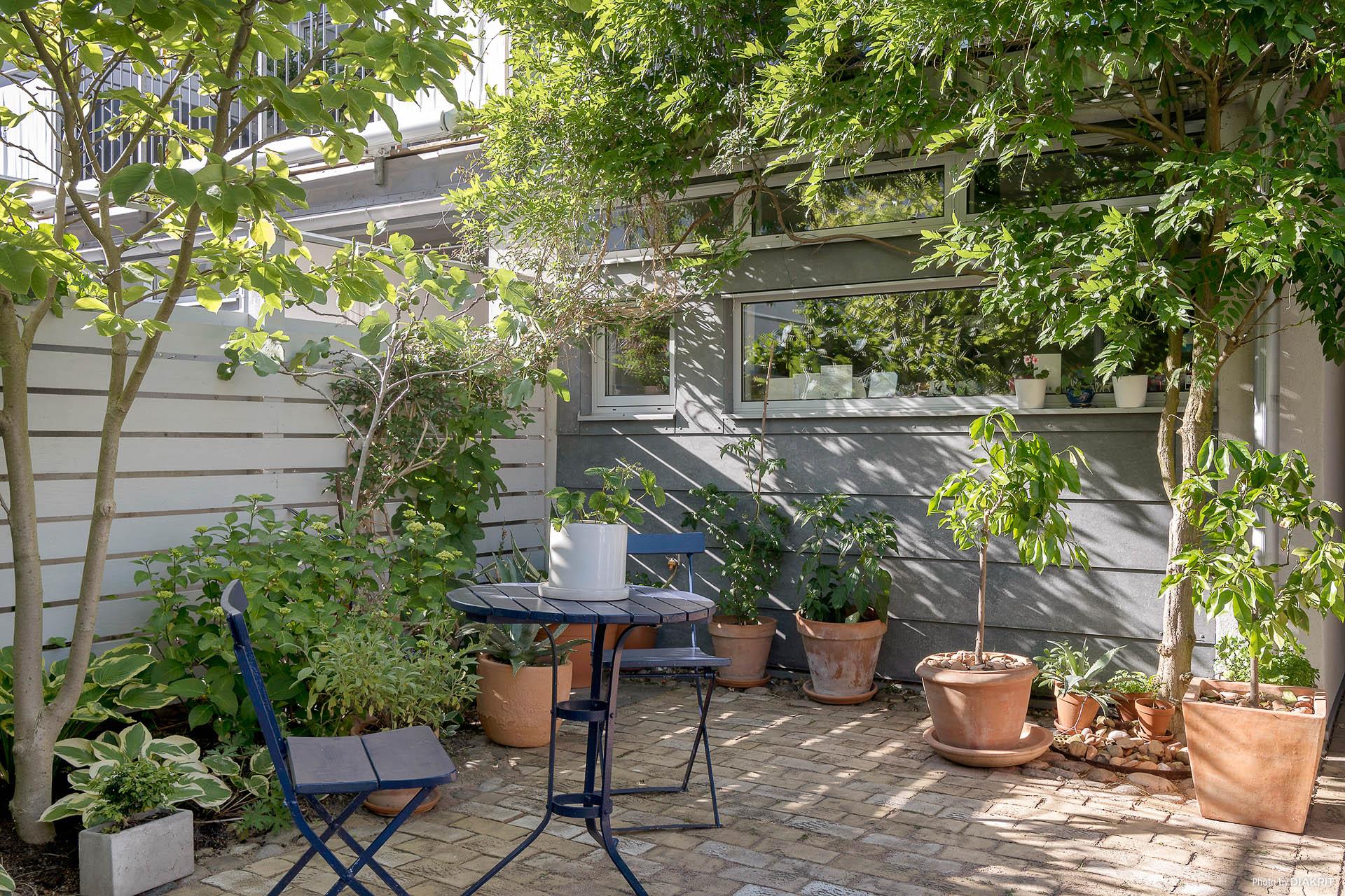 Stensatt innergård i behändigt och lättskött format