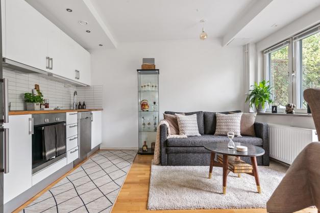 Kök och vardagsrum i ett