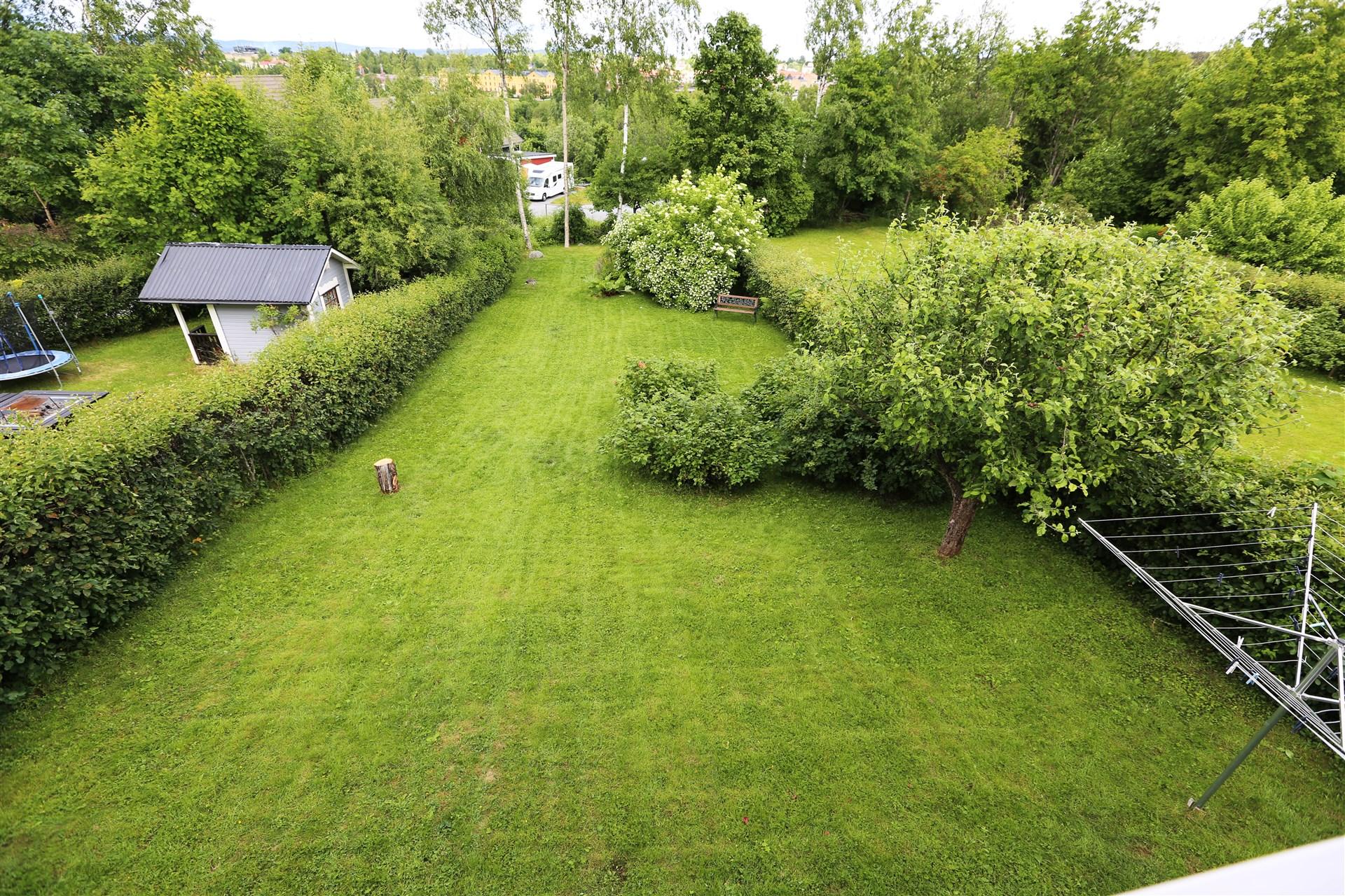 Trädgården på baksidan. Nås från sovrum och förråd.