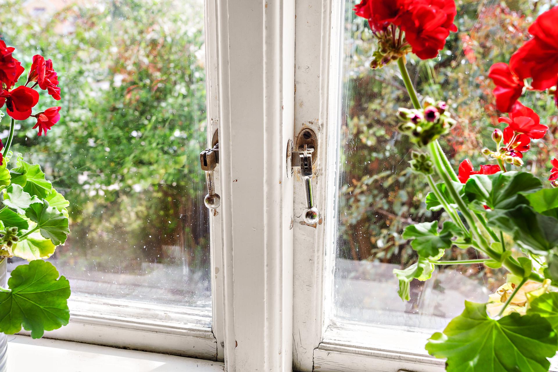 Detalj - fönster i kök