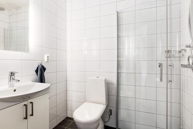 Det andra badrummet