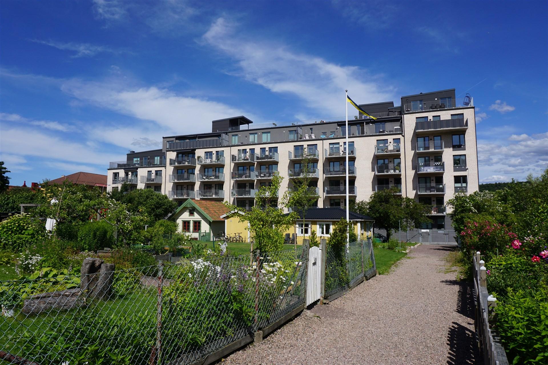 Lägenheten sett från kolloniområdet (Helmutsrogatan).
