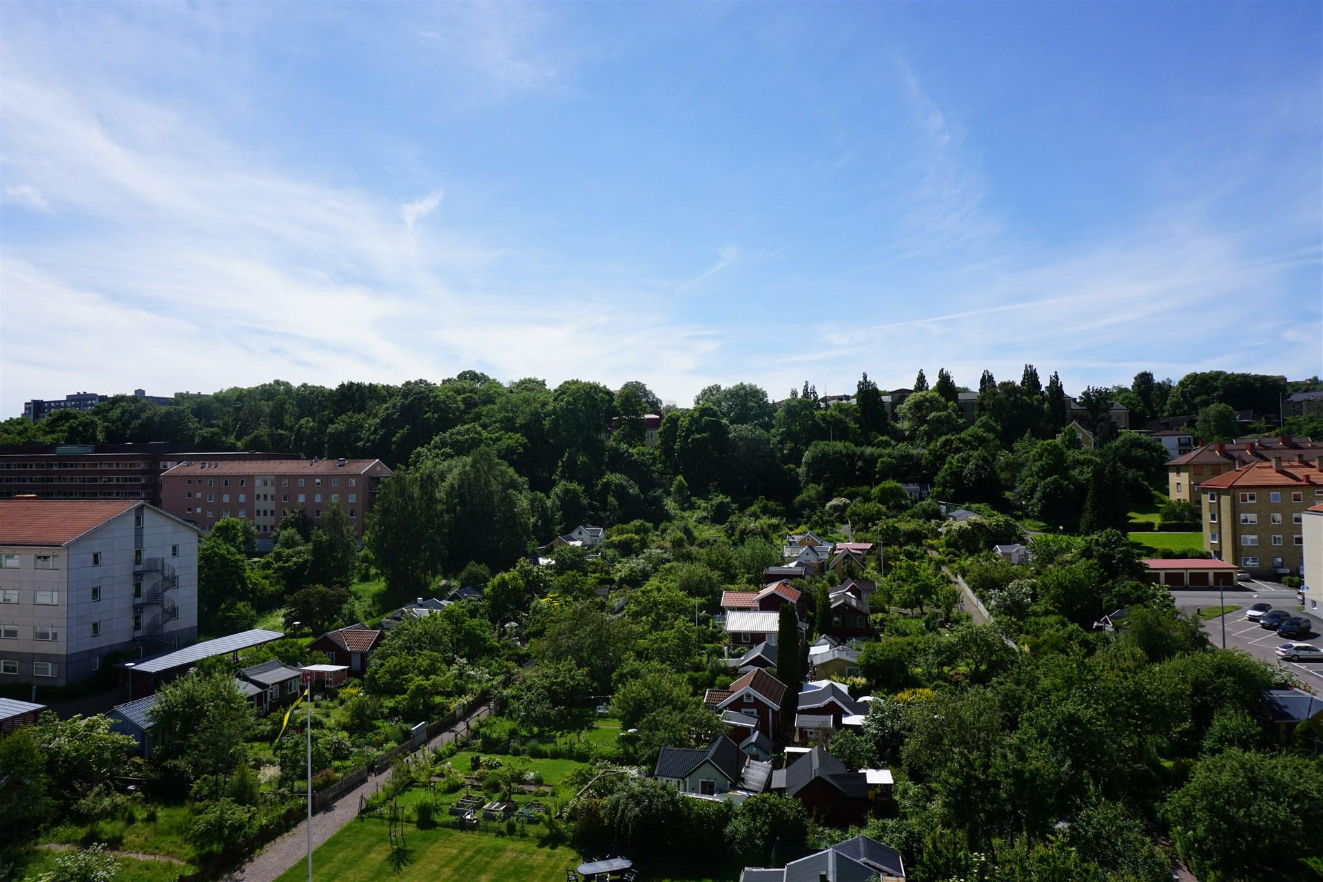 Utsikt från föreningens underbara takterrass