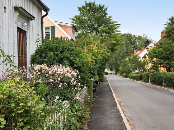 Gatan i sommarskrud (säljarens bild)