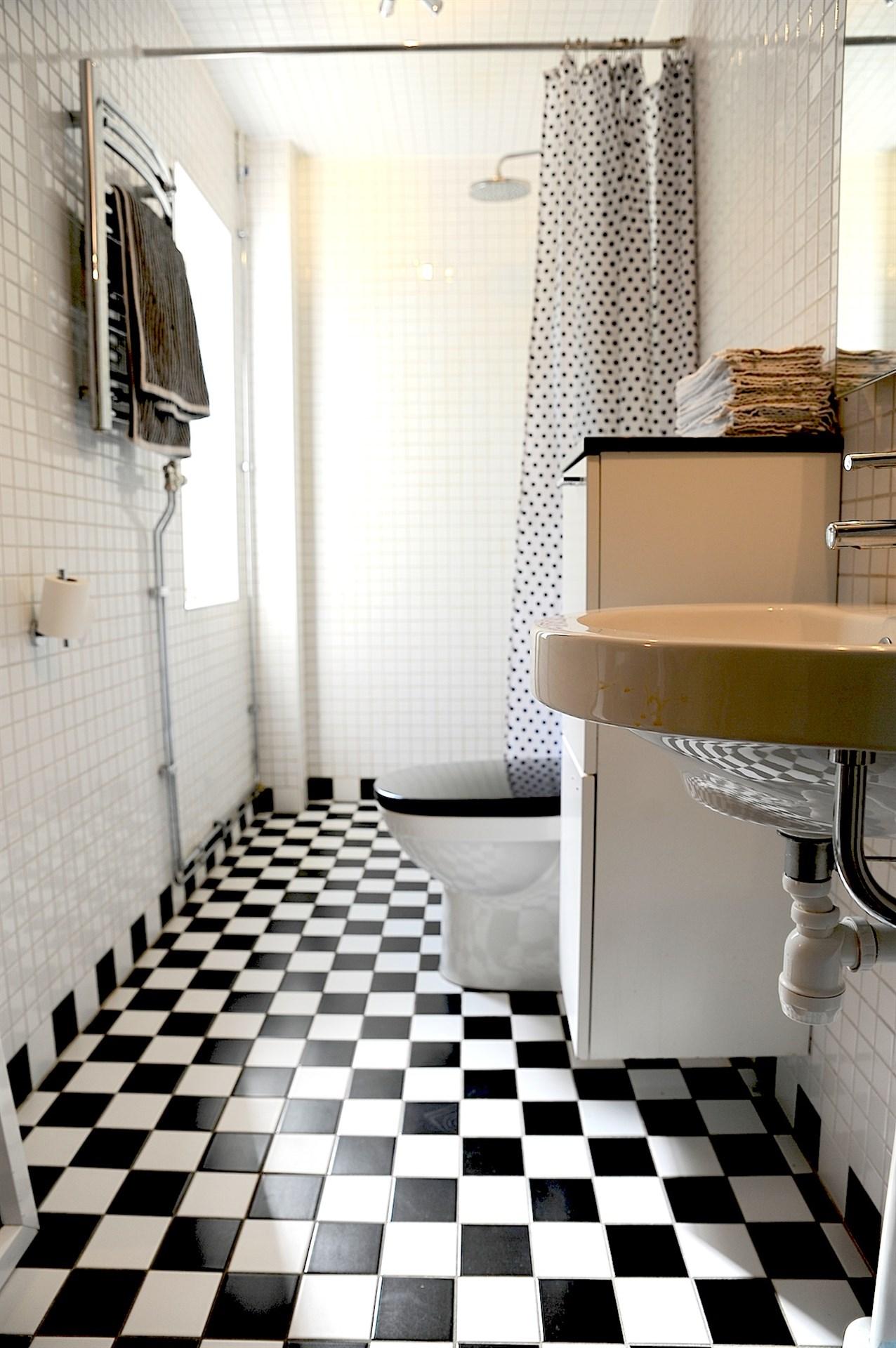 Helkaklad toalett med dusch samt även tvättmaskin och torktumlare